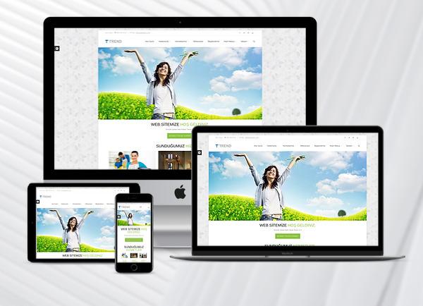 Temizlik Firmaları Web Tanıtım Sitesi 4