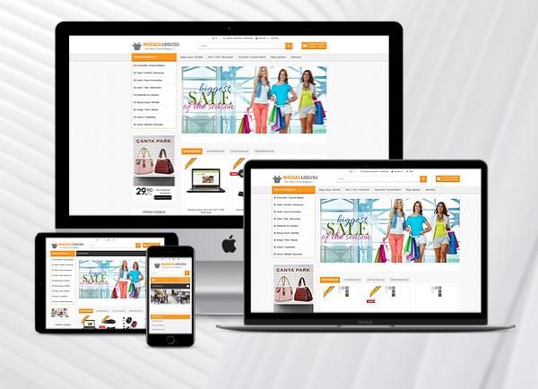 E-Ticaret Paketi Market
